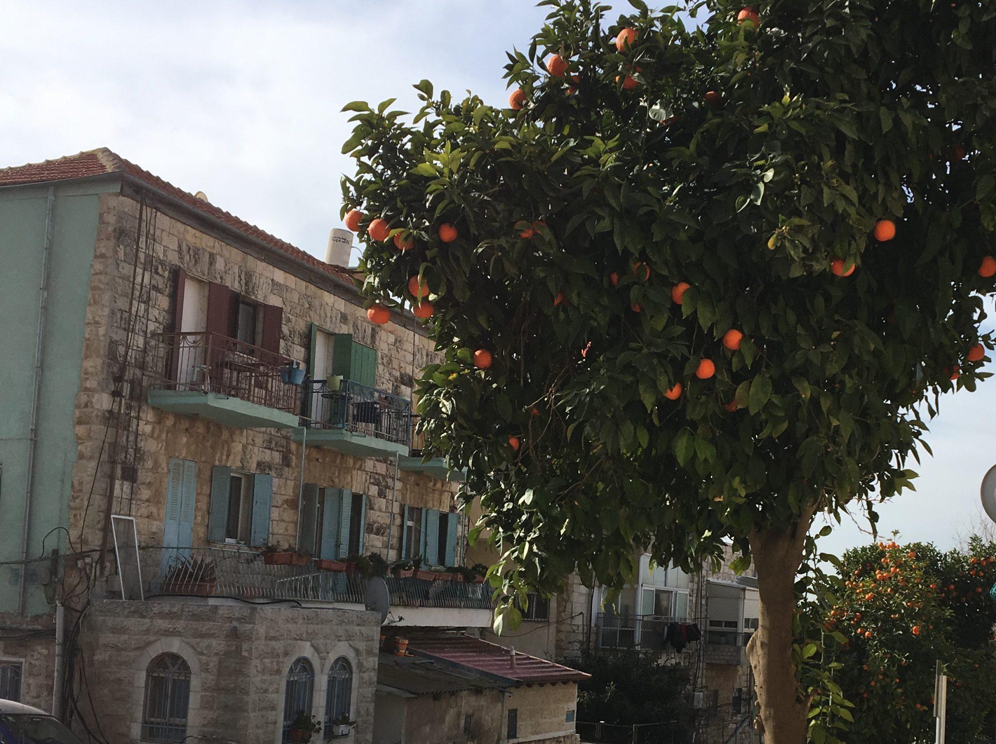 Modest Jerusalem